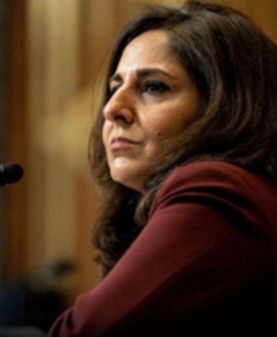 Indian-American Policy Expert Neera Tanden Appointed White House Senior Adviser