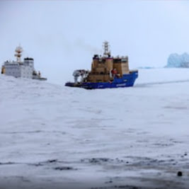 Sri Lanka Facing Its Worst Marine Eco Disaster from Burning Cargo Vessel: MEPA